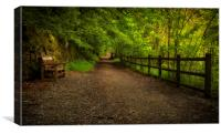 Forest walkway with fence and bench, Canvas Print