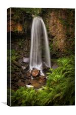 Waterfall and ferns at Melincourt, Canvas Print