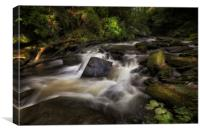 The Upper Clydach River in Swansea, Canvas Print