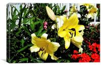 Artwork of beautiful Yellow Lilies, Canvas Print