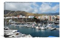 A marina in Funchal, Canvas Print