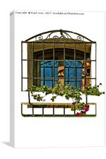 Decorative window in Funchal, Madeira., Canvas Print