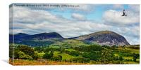 Typical Welsh scenery, Canvas Print