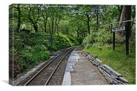 Dolgoch Station and woodlands. , Canvas Print