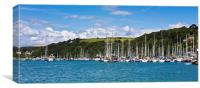 Yachts on the River Dart, Canvas Print