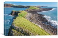 Reverse Worms Head, Canvas Print