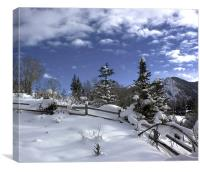 After the Snow, Canvas Print