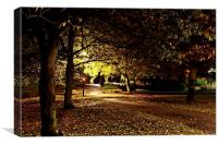 stapenhill gardens at night, Canvas Print