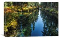 A Watery Avenue of Trees, Canvas Print