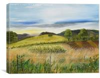 Vineyard in Ellijay - Pasture scene from Chateau , Canvas Print