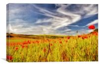 Painted Poppy Field, Canvas Print