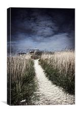 The Pathway Home, Canvas Print