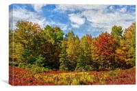 Painted Trees Of Fall, Canvas Print