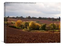 Ploughed Fields in Autumn, Canvas Print