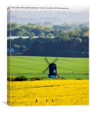 Windmill in a field of Yellow Oilseed Rape, Canvas Print