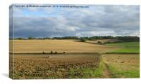 Ploughing in the patchwork, Canvas Print