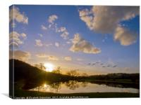 Geese over Sarratt Water meadow at Sunset, Canvas Print