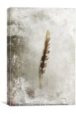 Standing Feather, Canvas Print