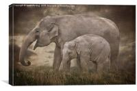 Elephant Mother and Calf, Canvas Print