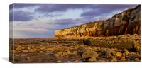 Hunstanton Wreck and Cliffs, Canvas Print