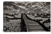 the boardwalk at dungeness, Canvas Print