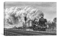 Steaming to York, Canvas Print