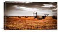 The Harvest is now complete, Canvas Print
