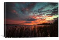 Sunset At Lake Louisa Florida, Canvas Print