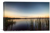 Peaceful Lake Dixie Florida Sunrise, Canvas Print