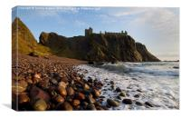 Dunnottar Bay and Castle, Canvas Print