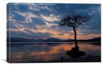 Millarochy Bay, Loch Lomond., Canvas Print