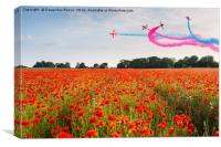 Red Arrows acrobatic flight over poppy field, Canvas Print