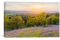 The Great Malvern Sunset and the Bluebells, Canvas Print