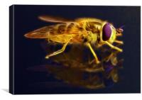 Electric Bee, Canvas Print