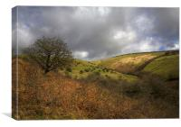 Exmoor Valley, Canvas Print