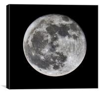 Moon, Canvas Print