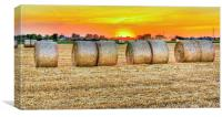 round bales in Modena, Italy, Canvas Print