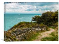 Durlston Country Park View, Canvas Print