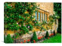 Climbing Roses, Flowers & Architecture., Canvas Print