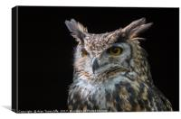 MacKinders eagle owl, Canvas Print