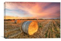 Harvest Sunset in Cornwall, Canvas Print