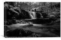 In the Brecon Beacons, Canvas Print