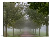 Foggy Morning Country Path, Canvas Print