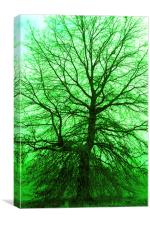 Tree of green, Canvas Print