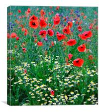 Wild about Flowers, Canvas Print