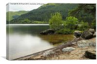 The Banks of Loch Eck, Canvas Print
