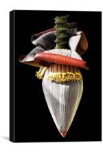 Banana Flower, Canvas Print