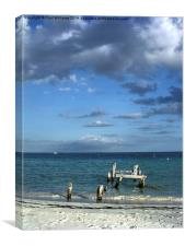 Old Jetty Supports, Canvas Print