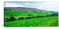 Swaledale with Heather in Bloom, Canvas Print