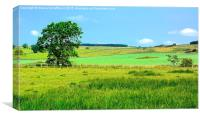 Northumberland Scenery, Canvas Print